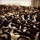 Ferrer Xocolata Pastisseria  - 32405-18813348_1901721306756745_6019834174770721957_n.jpg