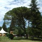 Espai de banquets La Torre dels Til·lers - dfbd0-foto-jardi-1.jpg